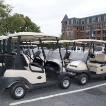 Golf Carts Lining Up